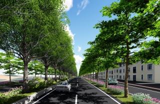 ↑道路模擬示意圖