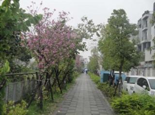 臺南市新南國民小學,整體通學步道新建工程,平整的人行道讓學生家長都放心!